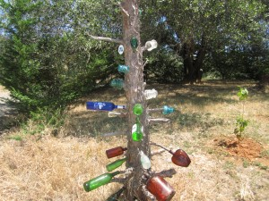 Bottle & Tree Sculture