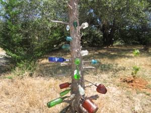 Bottle & Tree Sculture