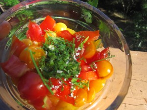 Yellow Plum Salsa